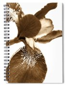 Japanese Iris Flower Sepia Brown Spiral Notebook