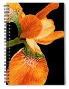 Japanese Iris Orange Black Spiral Notebook