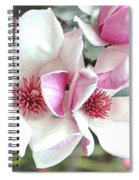 Japanese Magnolia Spiral Notebook