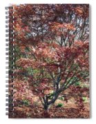 Japanese Maple Spiral Notebook