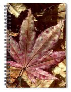 Japanese Maple Tree Leaves Spiral Notebook