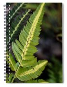 Japanese Painted Fern Spiral Notebook