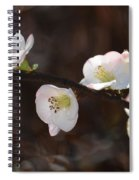 Japanese Quince 2 Spiral Notebook