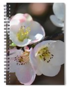 Japanese Quince 4 Spiral Notebook