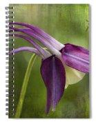 Japanese Serenity Columbine Blossom Spiral Notebook