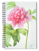 Japanese Tree Peony Spiral Notebook