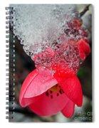 Ice Flower Spiral Notebook