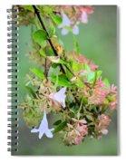 Japonica In Autumn Spiral Notebook