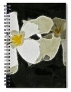 Jasmine Expressive Brushstrokes Spiral Notebook