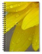 Jaune Petals Spiral Notebook