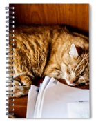 Jc Napping Spiral Notebook
