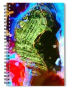 Jealousy Spiral Notebook