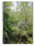Jean Lafitte National Preserve Swamp Louisiana Spiral Notebook