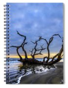 Jekyll Island Seascape Spiral Notebook