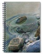 Jekyll Island Tidal Pool Spiral Notebook