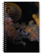 Jelley Fish Spiral Notebook
