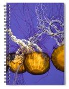 Jelly Congregation Spiral Notebook