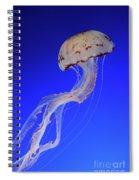 Jellyfish 2 Spiral Notebook