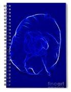 Jellyfish Fractal 2 Spiral Notebook
