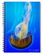 Jellyfish Fractal Spiral Notebook