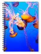 Jellyfish In Abundance Spiral Notebook