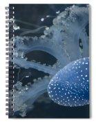 Jellyfish In Blue Spiral Notebook