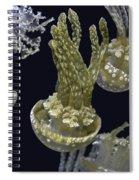 Jellyfish Of Aquarium Of The Bay San Francisco Spiral Notebook