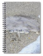 Jellyfish On The Sand Spiral Notebook