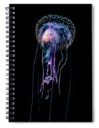 Jellyfish  Pelagia Noctiluca  With Fish Spiral Notebook