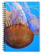 Jellyfish Trio Spiral Notebook