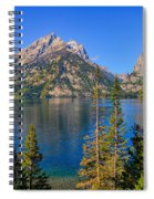 Jenny Lake Overlook Spiral Notebook
