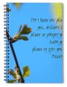 Jeremiah 29 Spiral Notebook
