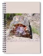 Jewel In Petrified Forest Spiral Notebook