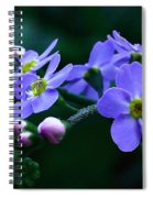 Jewel In The Shadows Spiral Notebook