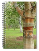 Jewel In The Woods Spiral Notebook