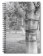 Jewel In The Woods In Black And White Spiral Notebook