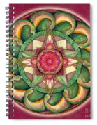 Jewel Of The Heart Mandala Spiral Notebook