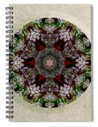 Jewels Of The Sea  Spiral Notebook