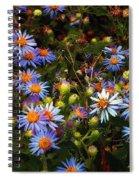 Jewels Pastorale Spiral Notebook