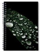 Jewels Spiral Notebook