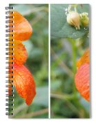 Jewelweed Flower In Stereo Spiral Notebook