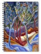Jn126 Shelter 2 Spiral Notebook