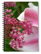 Asclepias And Friend Spiral Notebook