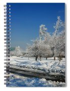 Jogger On Ice Spiral Notebook
