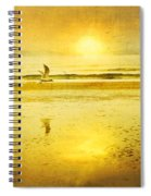 Jogging On Beach With Gulls Spiral Notebook