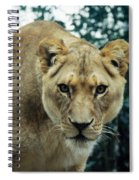 Join Me For Lunch? Spiral Notebook