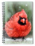 Jolly Old ....... Cardinal  Spiral Notebook