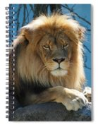 Joshua The Lion On His Rock Spiral Notebook