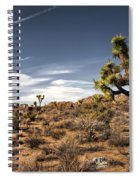 Joshua Tree 15 Spiral Notebook
