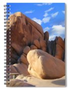 Joshua Tree Anomoly Spiral Notebook